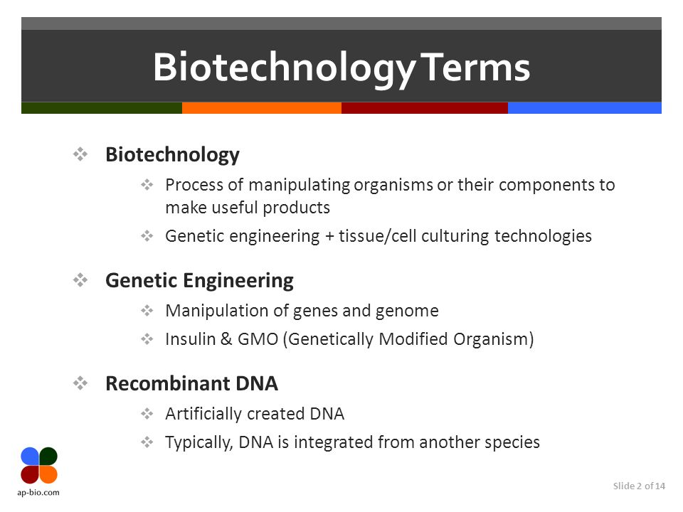 Slide 13 of 14 Biotechnology Terms (More) Genomic library Thousands of recombinant plasmid clones Each has a piece of the original genome cDNA Library Complementary DNA Reverse transcriptase makes cDNA from mRNA