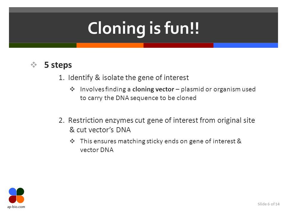 Slide 7 of 14 Cloning is fun!.(Page 2) 5 steps 3.