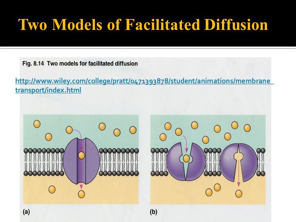 Two Models of Facilitated Diffusion
