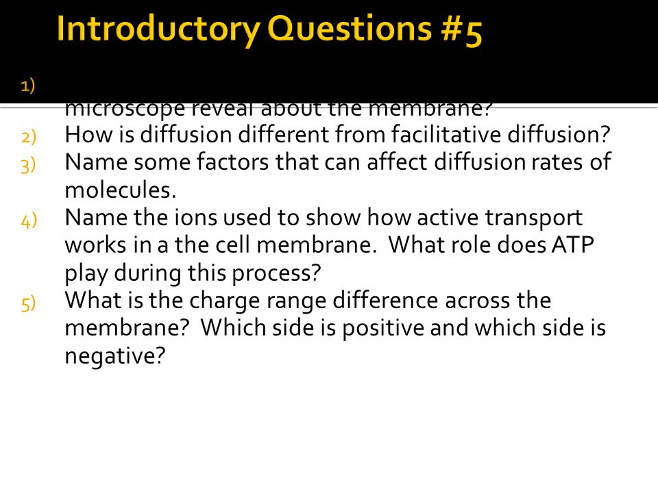 1) What did the freeze fracture process and electron microscope reveal about the membrane? 2) How is diffusion different from facilitative diffusion?