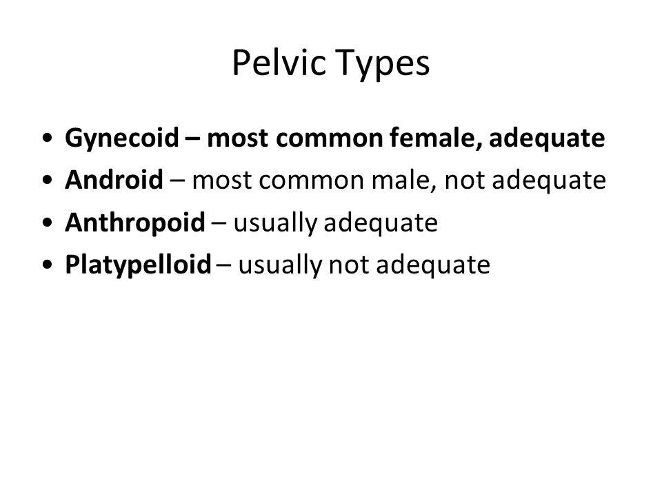 Pelvic Types Gynecoid – most common female, adequate Android – most common male, not adequate Anthropoid – usually adequate Platypelloid – usually not