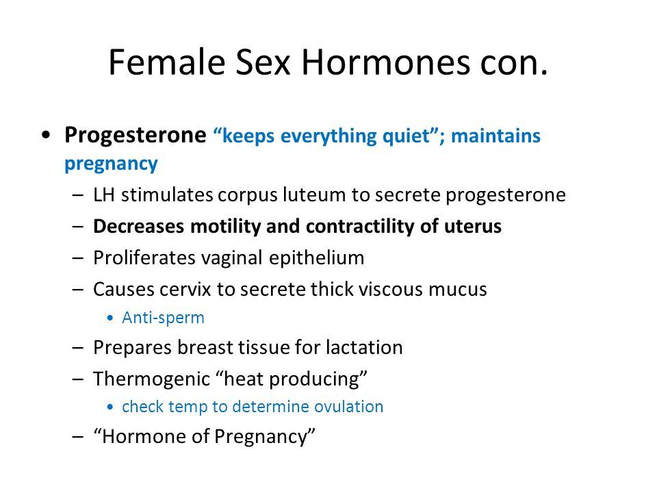 Female Sex Hormones con. Progesterone keeps everything quiet; maintains pregnancy –LH stimulates corpus luteum to secrete progesterone –Decreases moti