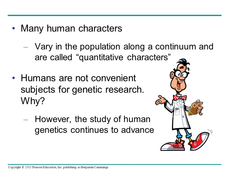 Copyright © 2005 Pearson Education, Inc. publishing as Benjamin Cummings Humans are not convenient subjects for genetic research. Why? – However, the