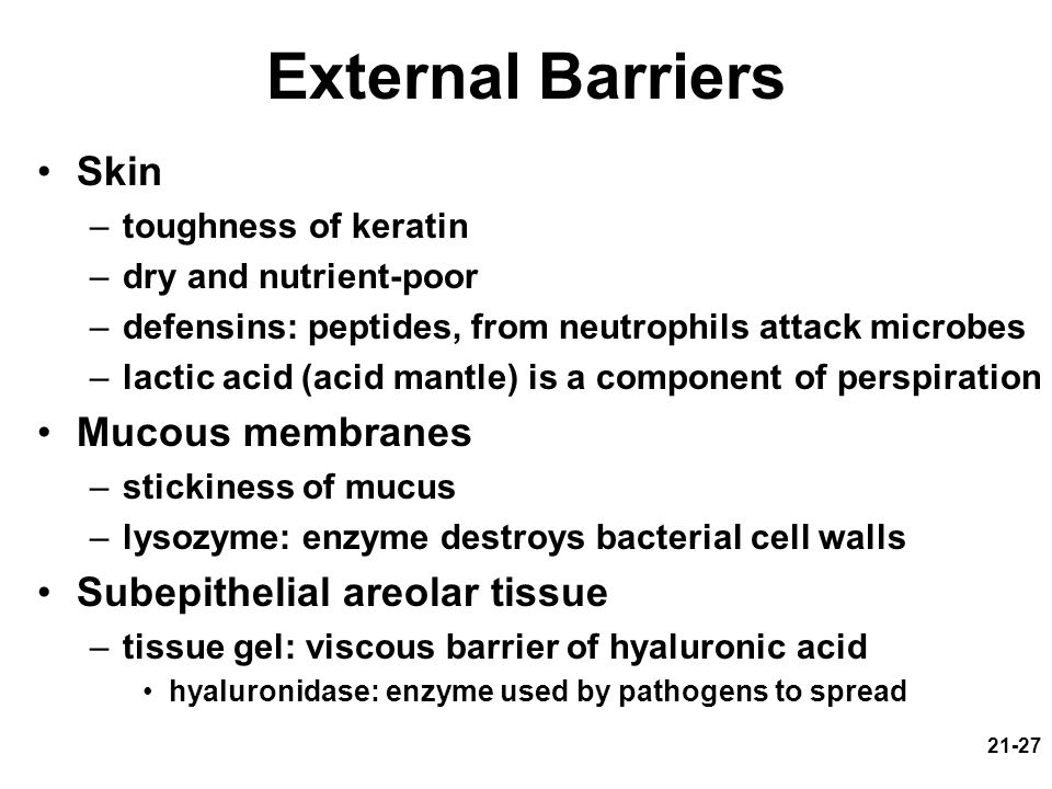 21-27 External Barriers Skin –toughness of keratin –dry and nutrient-poor –defensins: peptides, from neutrophils attack microbes –lactic acid (acid mantle) is a component of perspiration Mucous membranes –stickiness of mucus –lysozyme: enzyme destroys bacterial cell walls Subepithelial areolar tissue –tissue gel: viscous barrier of hyaluronic acid hyaluronidase: enzyme used by pathogens to spread