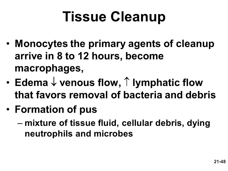 21-48 Tissue Cleanup Monocytes the primary agents of cleanup arrive in 8 to 12 hours, become macrophages, Edema venous flow, lymphatic flow that favors removal of bacteria and debris Formation of pus –mixture of tissue fluid, cellular debris, dying neutrophils and microbes