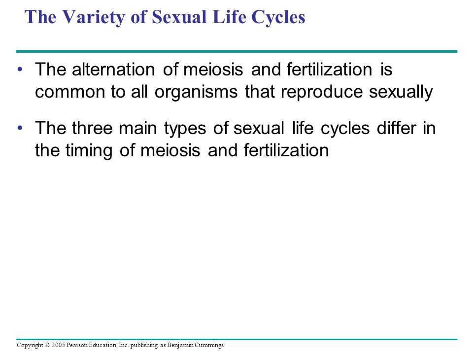 Copyright © 2005 Pearson Education, Inc. publishing as Benjamin Cummings The Variety of Sexual Life Cycles The alternation of meiosis and fertilizatio