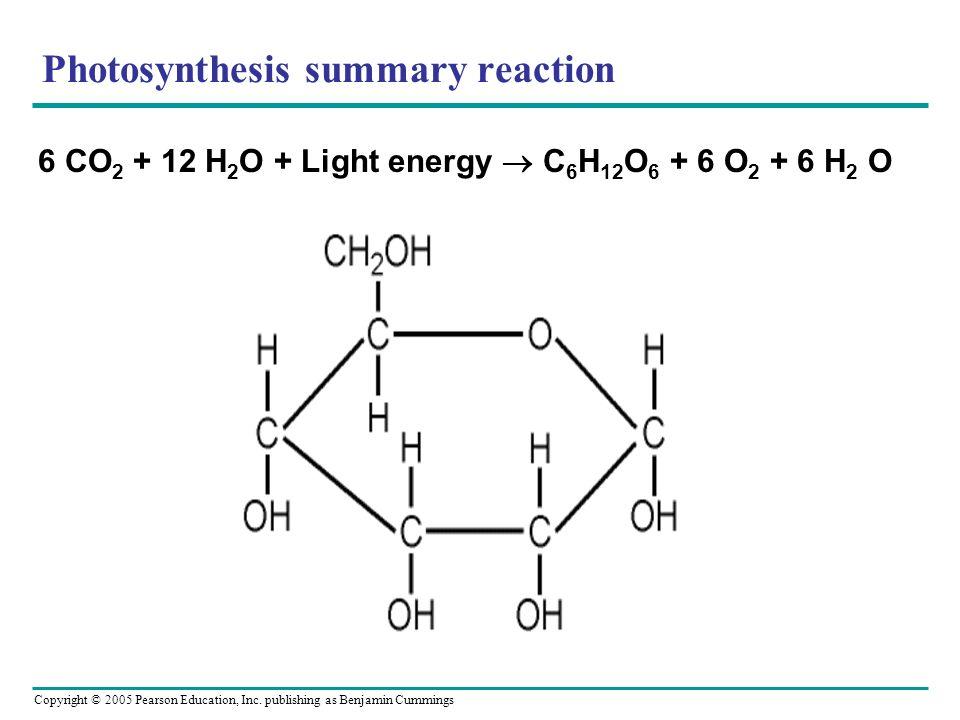 Copyright © 2005 Pearson Education, Inc. publishing as Benjamin Cummings Photosynthesis summary reaction 6 CO 2 + 12 H 2 O + Light energy C 6 H 12 O 6