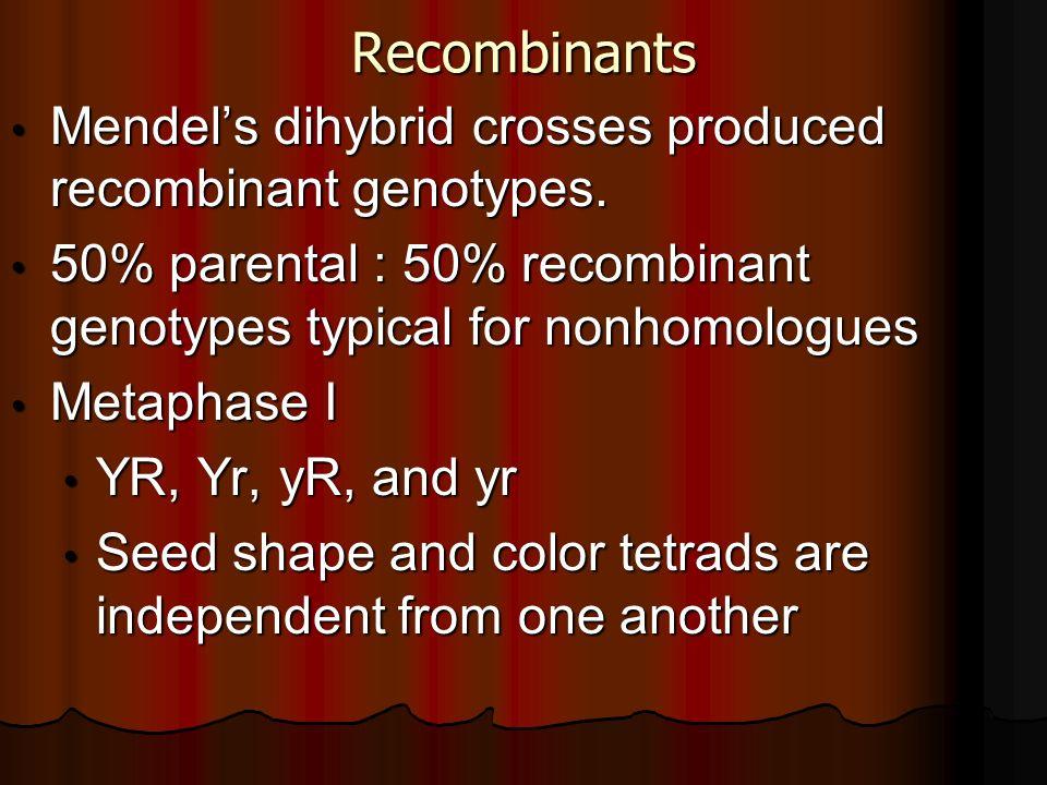 Recombinants Mendels dihybrid crosses produced recombinant genotypes. Mendels dihybrid crosses produced recombinant genotypes. 50% parental : 50% reco