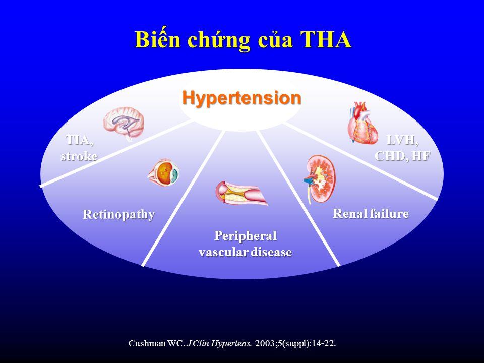 Cushman WC. J Clin Hypertens. 2003;5(suppl):14-22. Retinopathy Renal failure Peripheral vascular disease Bin chng ca THA LVH, CHD, HF TIA, stroke Hype
