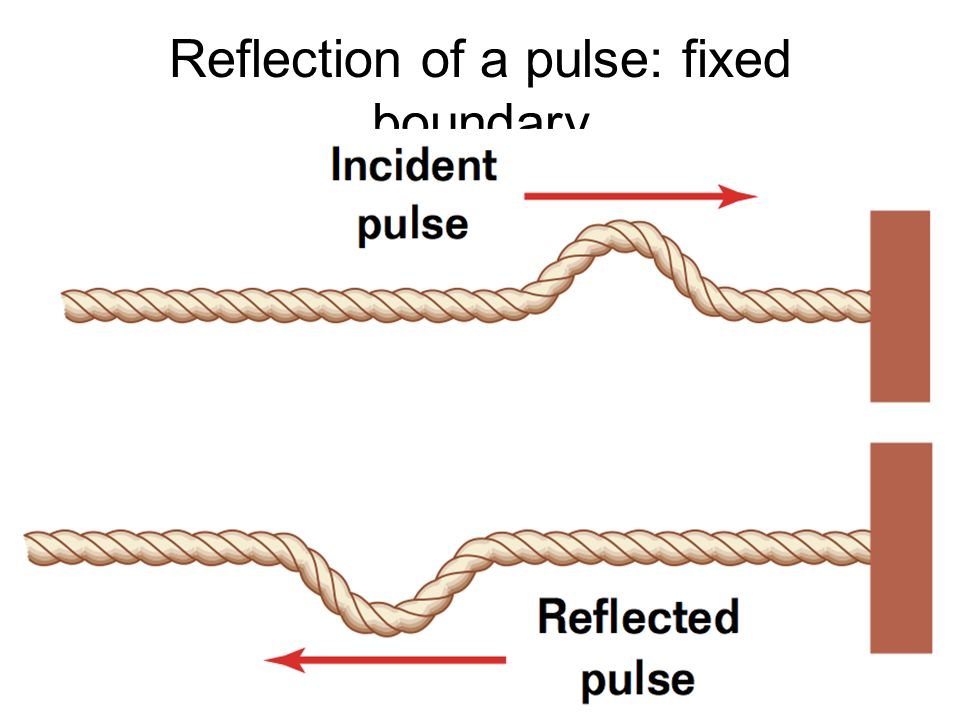 Reflection of a pulse: fixed boundary