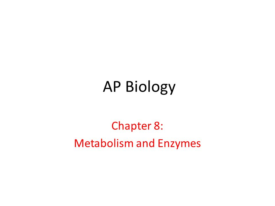 AP Biology Chapter 8: Metabolism and Enzymes