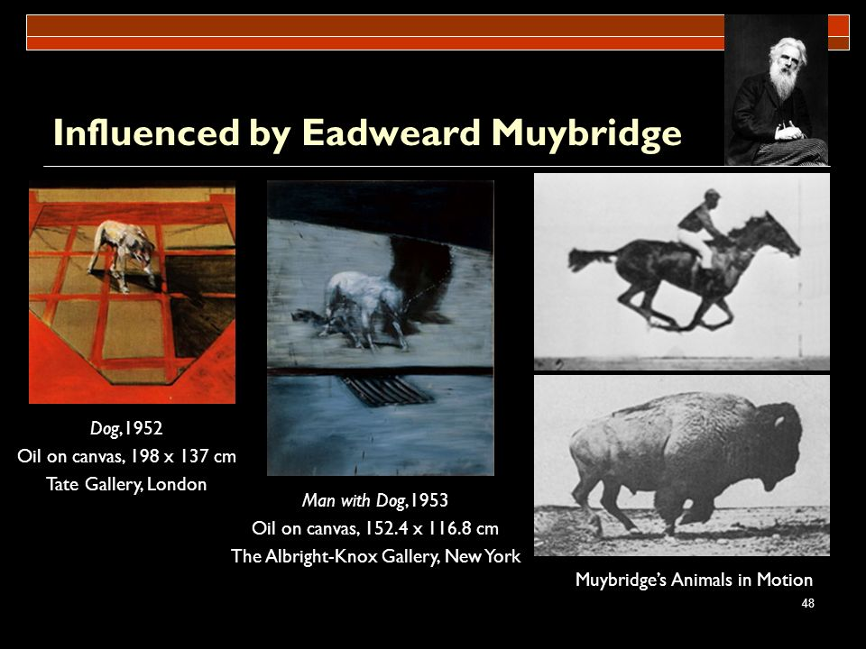 48 Influenced by Eadweard Muybridge Dog,1952 Oil on canvas, 198 x 137 cm Tate Gallery, London Man with Dog,1953 Oil on canvas, 152.4 x 116.8 cm The Al