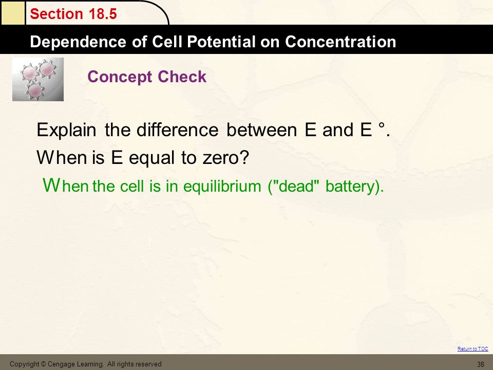Section 18.5 Dependence of Cell Potential on Concentration Return to TOC Copyright © Cengage Learning. All rights reserved 38 Concept Check Explain th