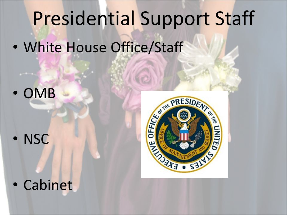 Presidential Support Staff White House Office/Staff OMB NSC Cabinet