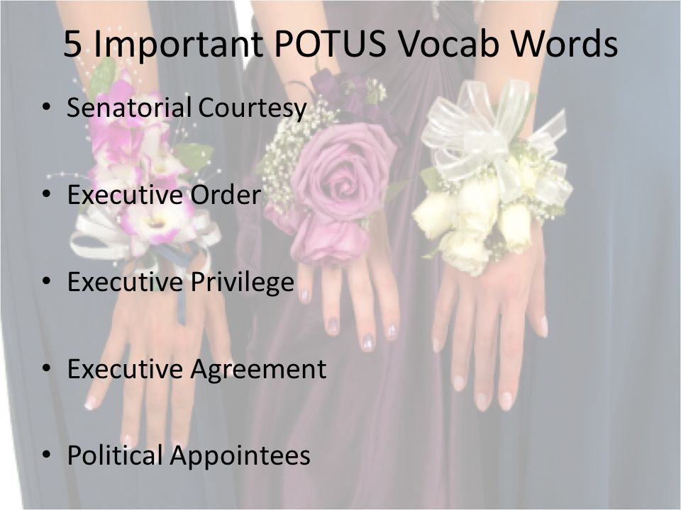 5 Important POTUS Vocab Words Senatorial Courtesy Executive Order Executive Privilege Executive Agreement Political Appointees