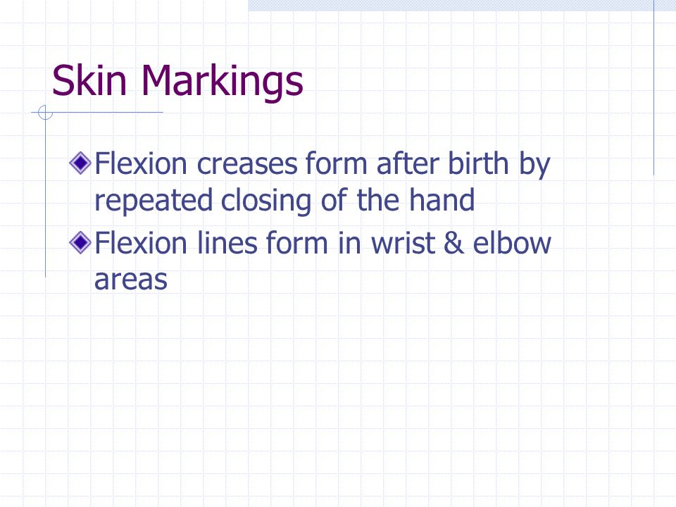 Skin Markings Flexion creases form after birth by repeated closing of the hand Flexion lines form in wrist & elbow areas