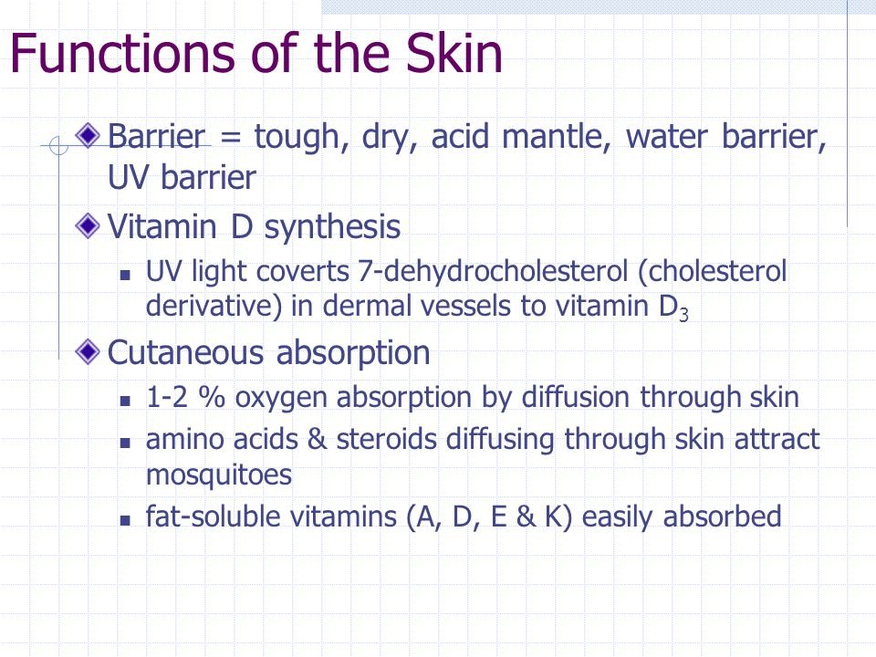 Functions of the Skin Barrier = tough, dry, acid mantle, water barrier, UV barrier Vitamin D synthesis UV light coverts 7-dehydrocholesterol (choleste