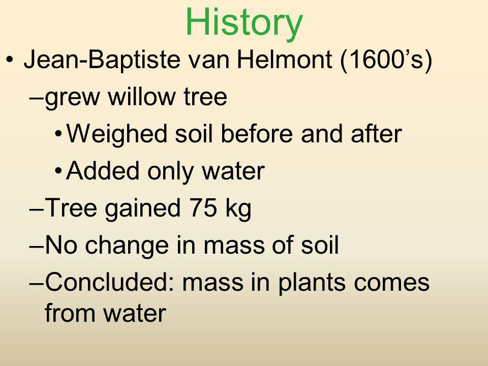 History Jean-Baptiste van Helmont (1600s) –grew willow tree Weighed soil before and after Added only water –Tree gained 75 kg –No change in mass of so