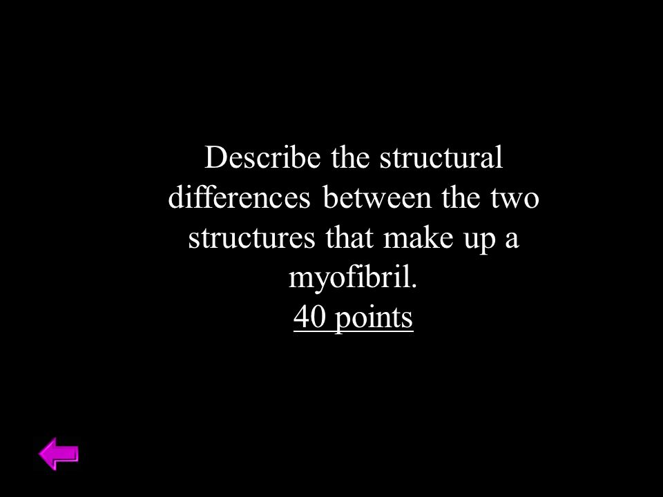 Describe the structural differences between the two structures that make up a myofibril. 40 points