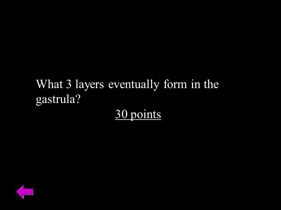 What 3 layers eventually form in the gastrula 30 points