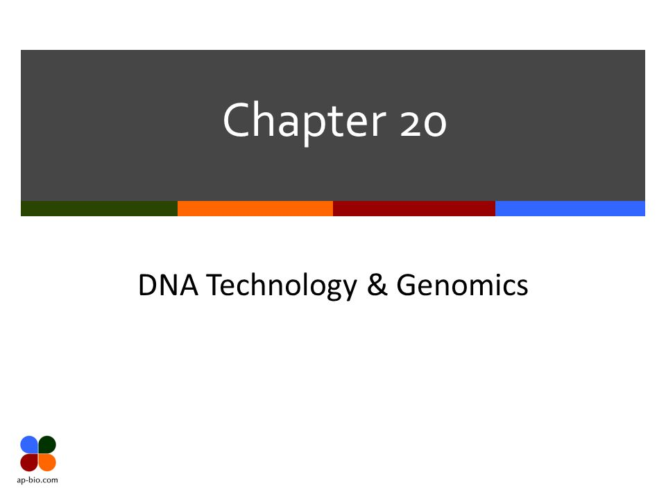 Chapter 20 DNA Technology & Genomics