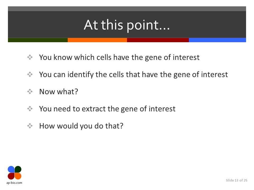 Slide 13 of 25 At this point… You know which cells have the gene of interest You can identify the cells that have the gene of interest Now what? You n