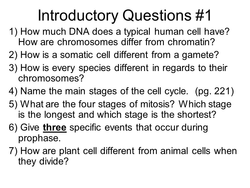 Introductory Questions #1 1) How much DNA does a typical human cell have? How are chromosomes differ from chromatin? 2) How is a somatic cell differen