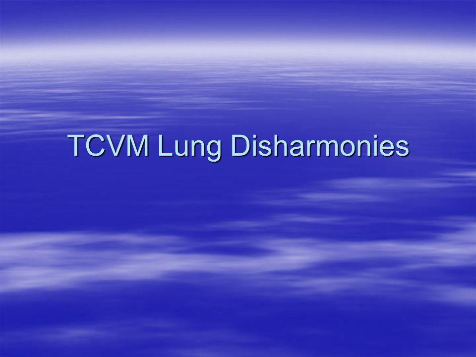 TCVM Lung Disharmonies