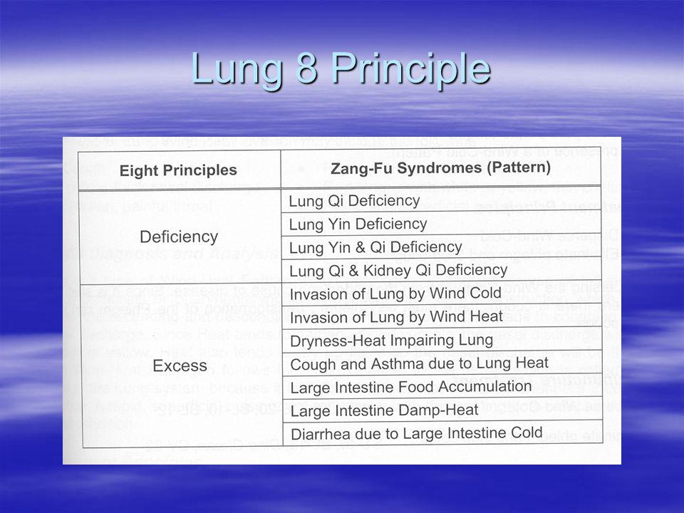 Lung 8 Principle