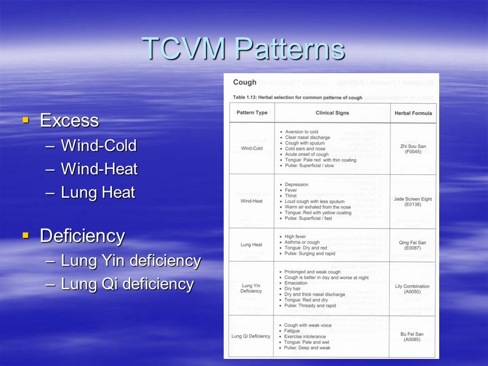 TCVM Patterns Excess Excess –Wind-Cold –Wind-Heat –Lung Heat Deficiency Deficiency –Lung Yin deficiency –Lung Qi deficiency