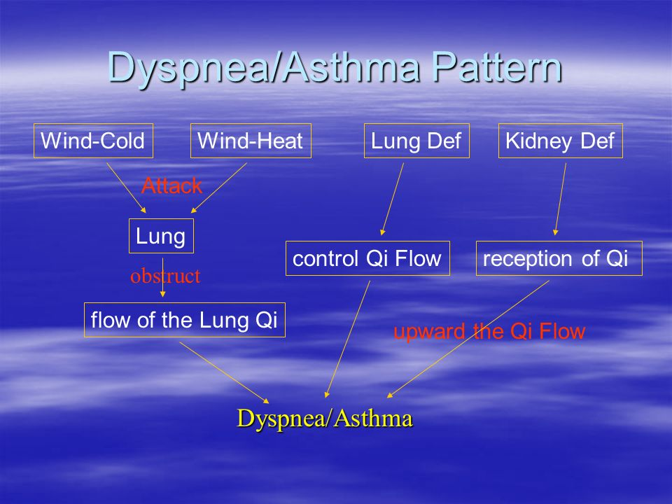 obstruct Wind ColdWind Heat Attack Lung flow of the Lung Qi control Qi Flow Kidney Def reception of Qi upward the Qi Flow Dyspnea/Asthma Lung Def Dysp