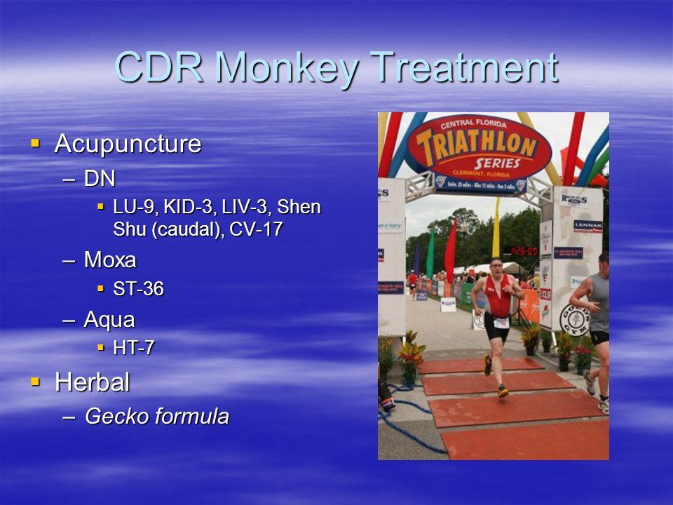 CDR Monkey Treatment Acupuncture Acupuncture –DN LU-9, KID-3, LIV-3, Shen Shu (caudal), CV-17 LU-9, KID-3, LIV-3, Shen Shu (caudal), CV-17 –Moxa ST-36