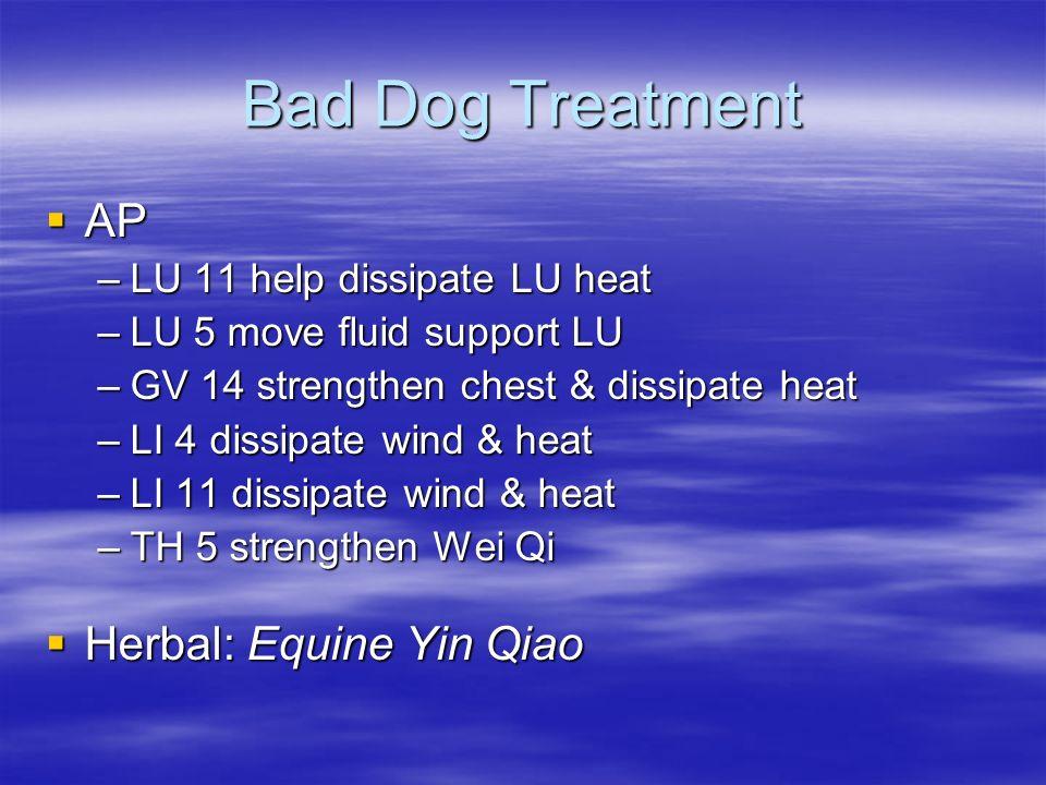 Bad Dog Treatment AP AP –LU 11 help dissipate LU heat –LU 5 move fluid support LU –GV 14 strengthen chest & dissipate heat –LI 4 dissipate wind & heat
