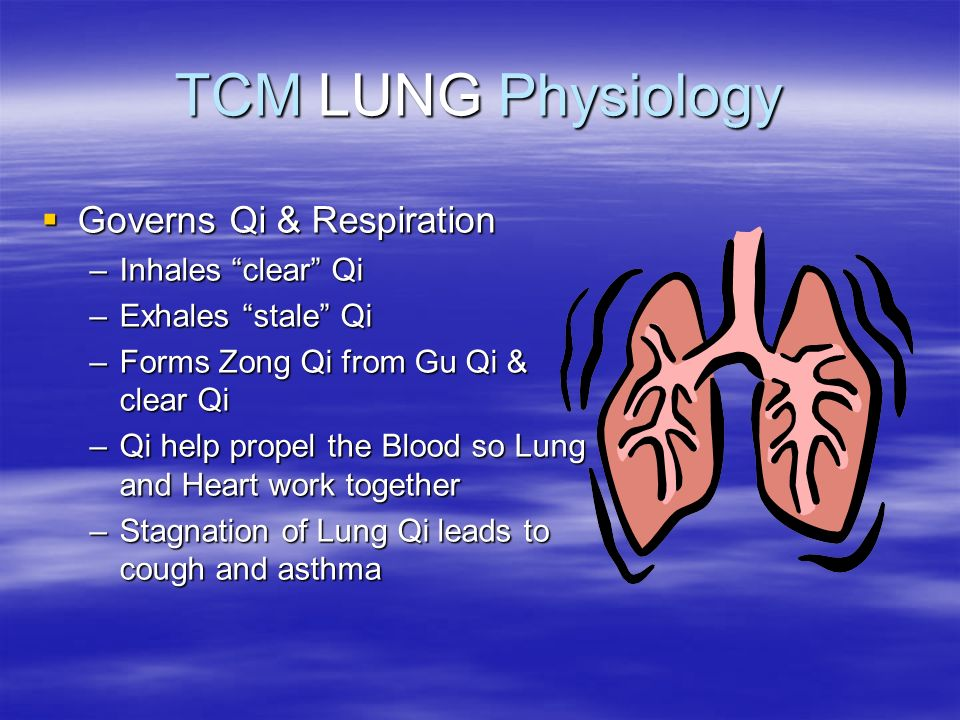 TCM LUNG Physiology Governs Qi & Respiration Governs Qi & Respiration –Inhales clear Qi –Exhales stale Qi –Forms Zong Qi from Gu Qi & clear Qi –Qi hel