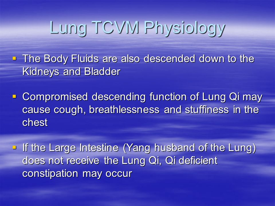 Lung TCVM Physiology The Body Fluids are also descended down to the Kidneys and Bladder The Body Fluids are also descended down to the Kidneys and Bla