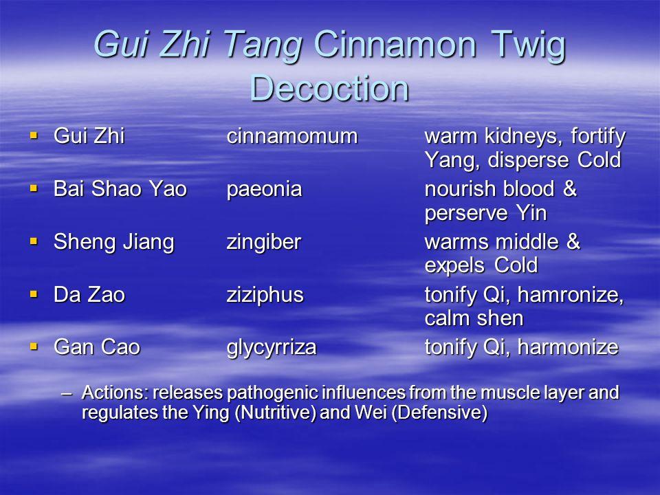 Gui Zhi Tang Cinnamon Twig Decoction Gui Zhi cinnamomumwarm kidneys, fortify Yang, disperse Cold Gui Zhi cinnamomumwarm kidneys, fortify Yang, dispers