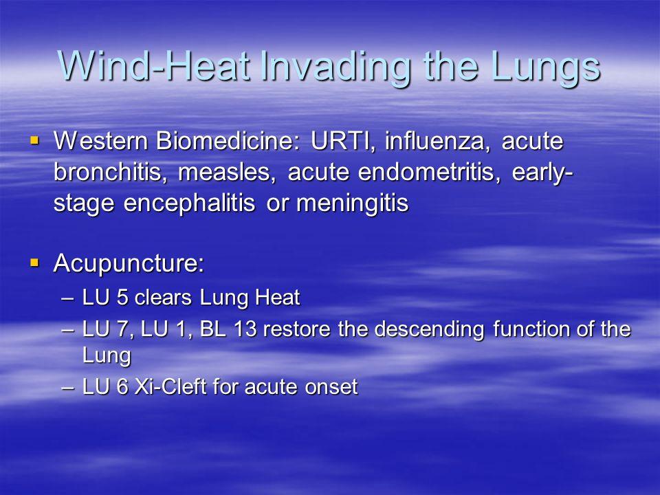 Wind-Heat Invading the Lungs Western Biomedicine: URTI, influenza, acute bronchitis, measles, acute endometritis, early- stage encephalitis or meningi