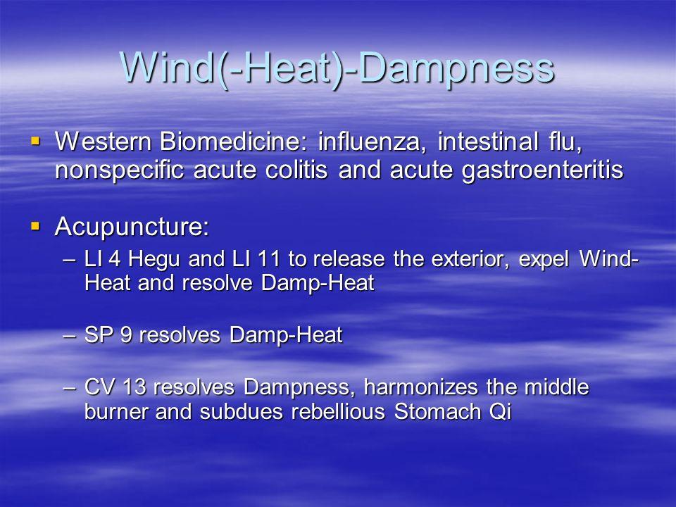 Wind(-Heat)-Dampness Western Biomedicine: influenza, intestinal flu, nonspecific acute colitis and acute gastroenteritis Western Biomedicine: influenz
