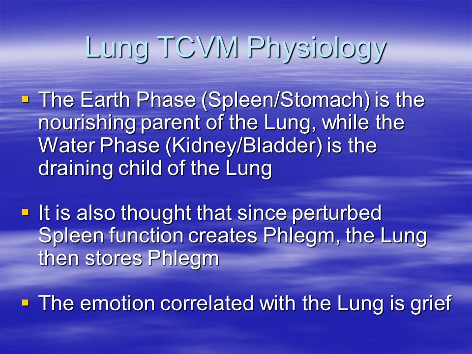 Lung TCVM Physiology The Earth Phase (Spleen/Stomach) is the nourishing parent of the Lung, while the Water Phase (Kidney/Bladder) is the draining chi