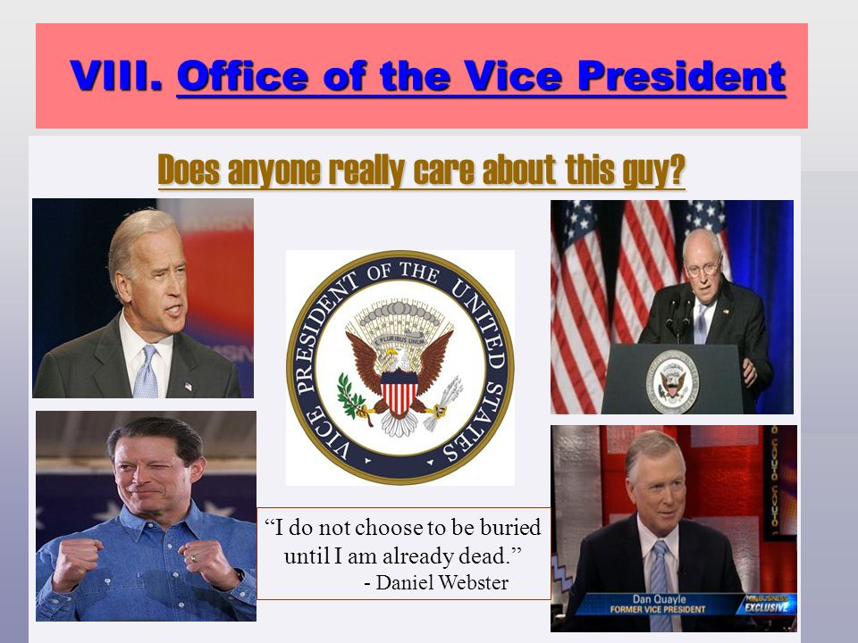 VIII. Office of the Vice President VIII. Office of the Vice President Does anyone really care about this guy? Does anyone really care about this guy?