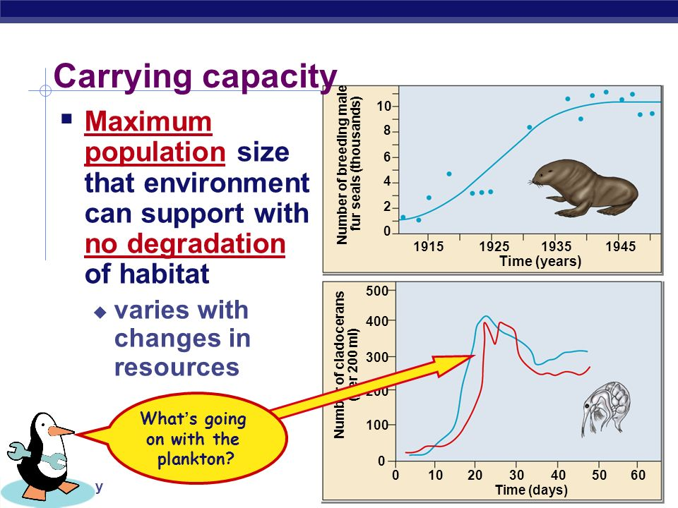 AP Biology K = carrying capacity Logistic rate of growth Can populations continue to grow exponentially? Of course not! effect of natural controls no