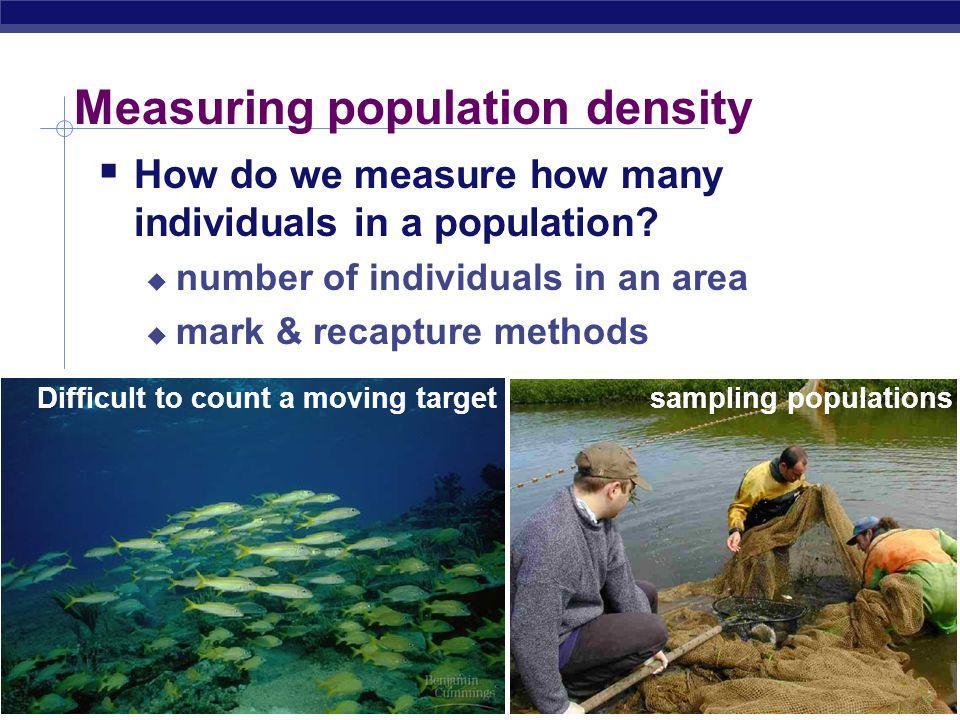 AP Biology 2007-2008 Any Questions?