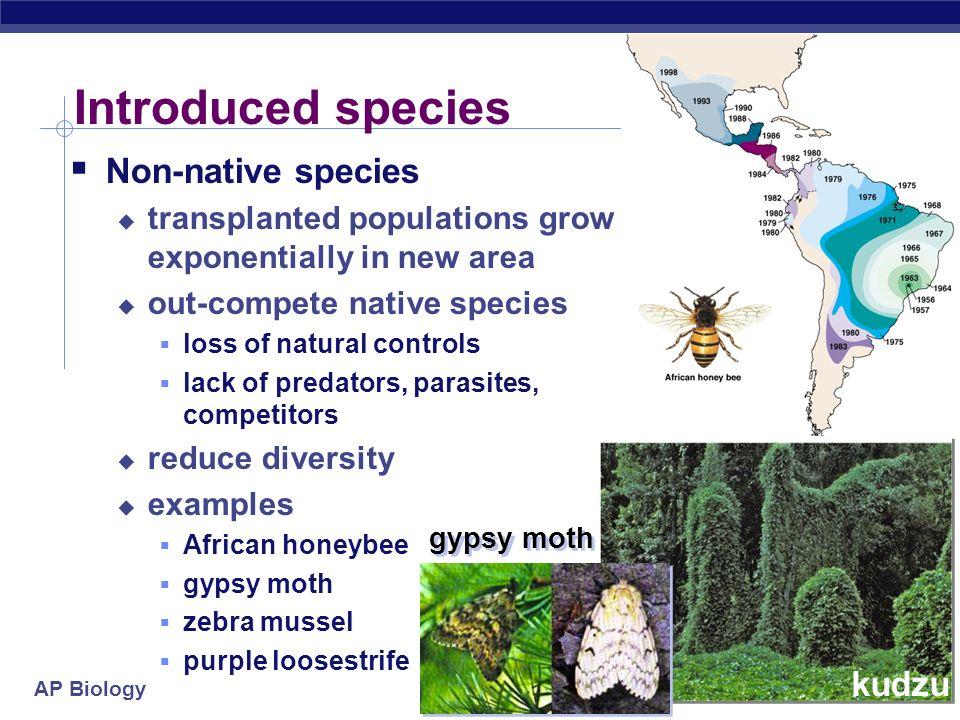 AP Biology Regulation of population size Limiting factors density dependent competition: food, mates, nesting sites predators, parasites, pathogens de