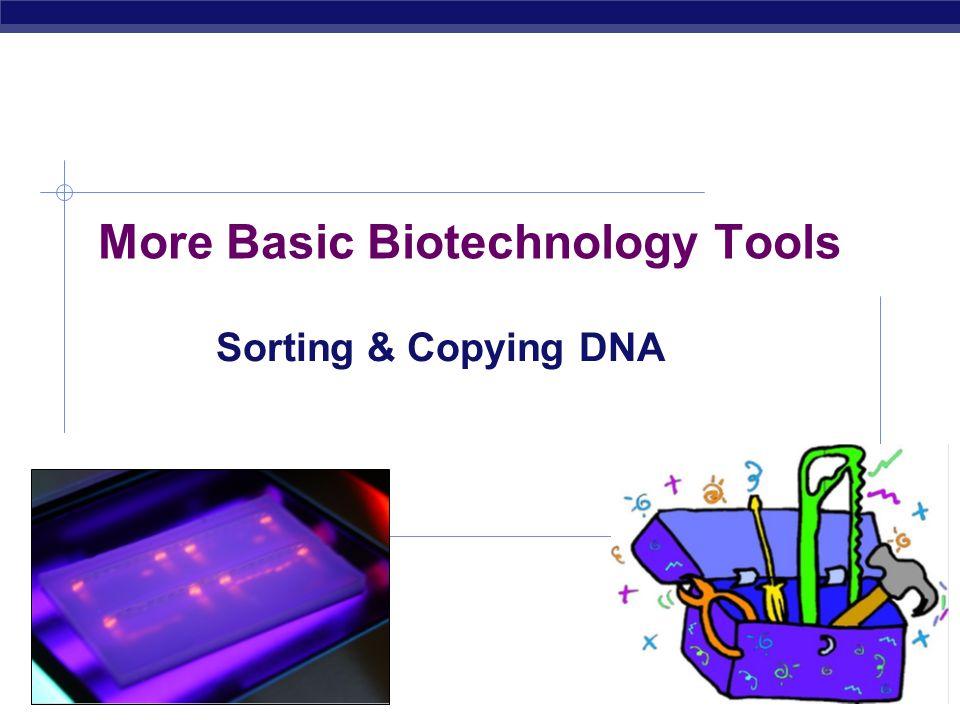 AP Biology 2007-2008 More Basic Biotechnology Tools Sorting & Copying DNA