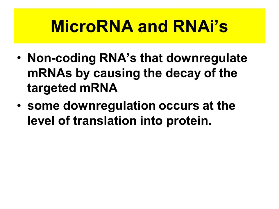 MicroRNA and RNAis Non-coding RNAs that downregulate mRNAs by causing the decay of the targeted mRNA some downregulation occurs at the level of transl