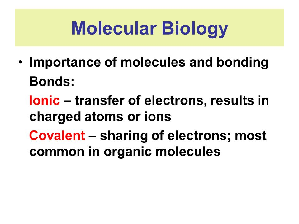 Molecular Biology Importance of molecules and bonding Bonds: Ionic – transfer of electrons, results in charged atoms or ions Covalent – sharing of ele