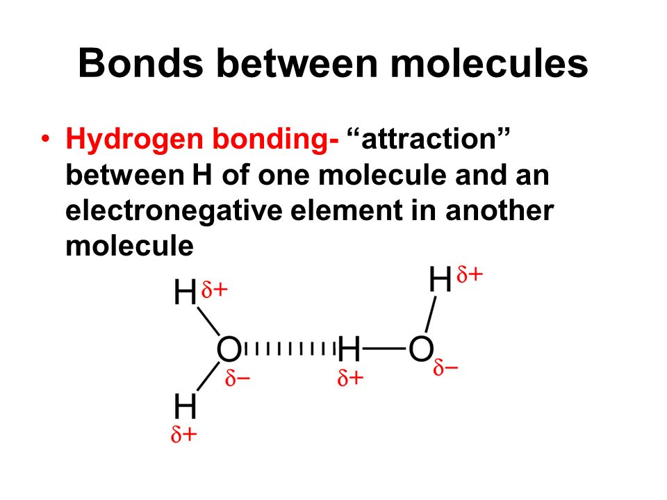 Bonds between molecules Hydrogen bonding- attraction between H of one molecule and an electronegative element in another molecule