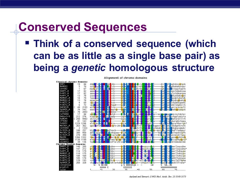 Discussion The more similar genetic loci two populations share, the more related they are WHY would this be??