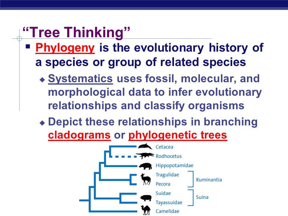 Tree Thinking Phylogenetics, Cladistics, Systematics