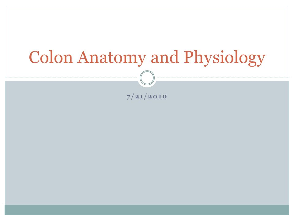 7/21/2010 Colon Anatomy and Physiology